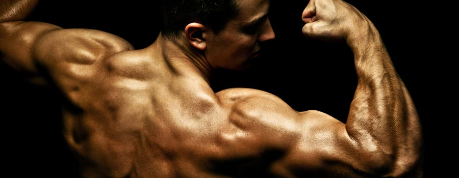 Five must-have supplements for hardgainers