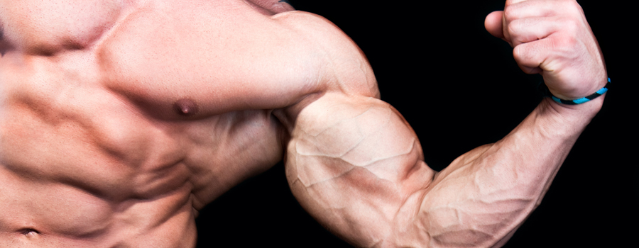 Beginners guide to becoming a bodybuilder.